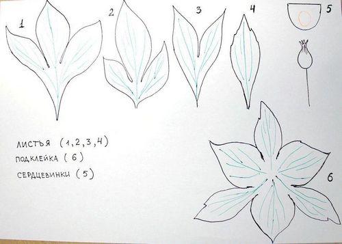 Выкройки цветов из фоамирана своими руками
